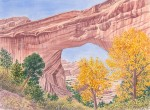"""Natural Bridge""17 x 23"