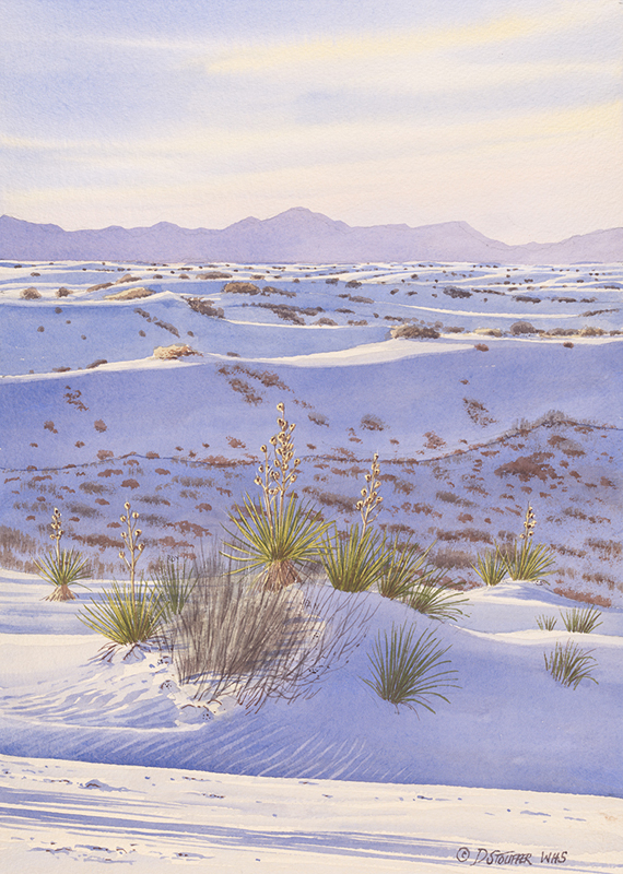"""White Sands Reverie""16 x 11"